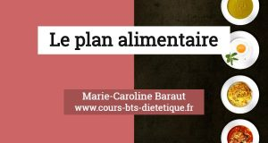 Nutrition Plan alimentaire