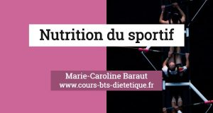 Nutrition du sportif