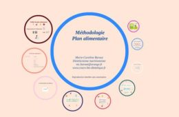 Nutrition II-03 - Le plan alimentaire