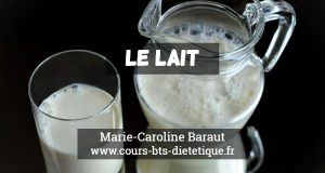 Connaissance des aliments le lait