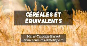 Connaissance des aliments Céréales