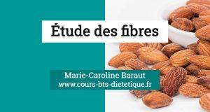 Nutrition Les fibres