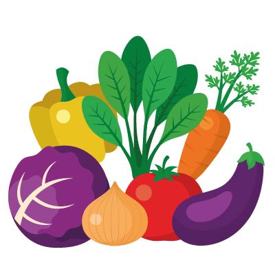 Formation diététique comment devenir diététicienne